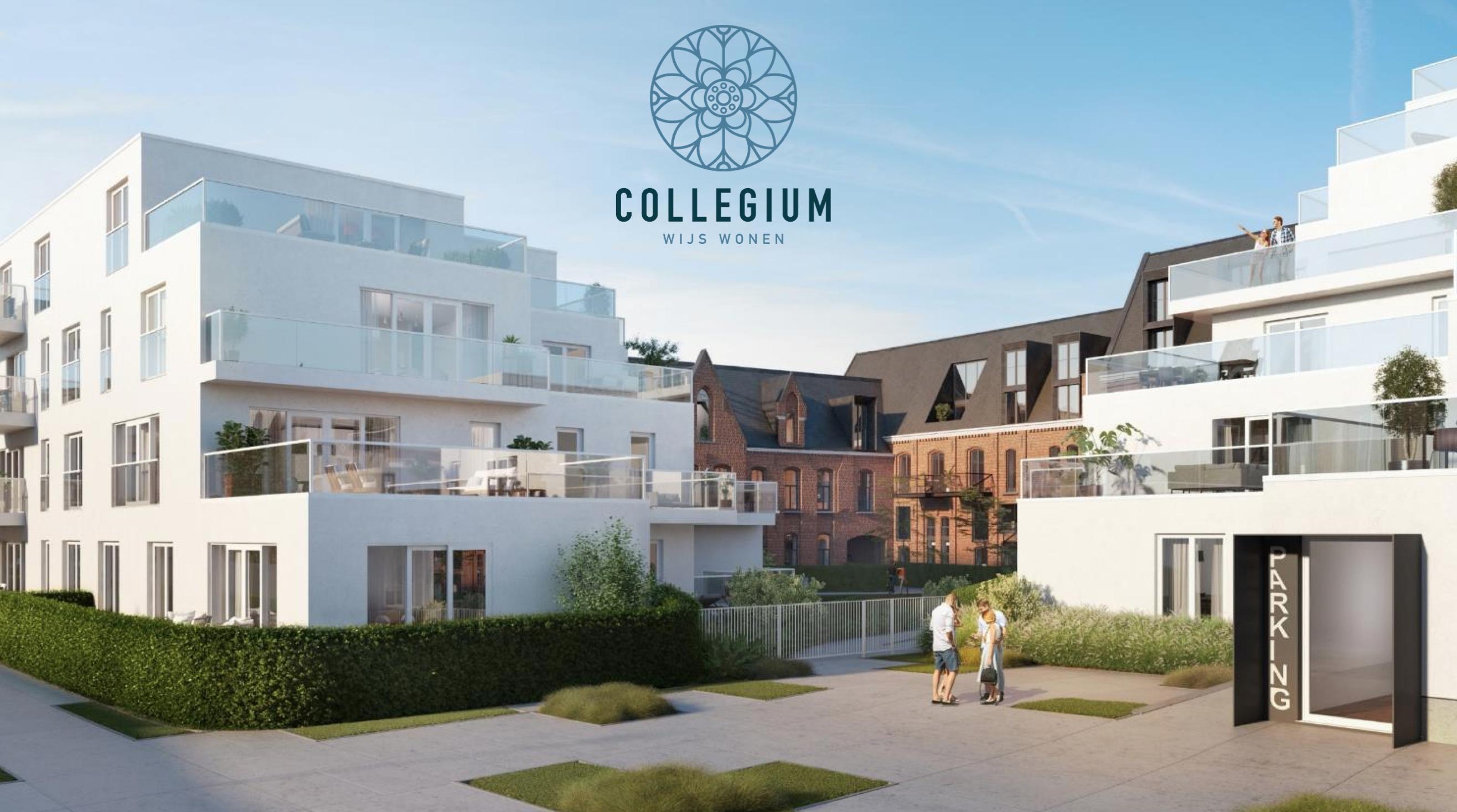 Nieuw project in de kijker: Collegium